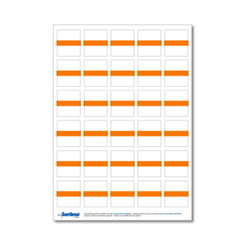 Inscription labels Insetbox 30 pcs orange (1 sheet)